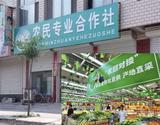 枣阳太平zytp11